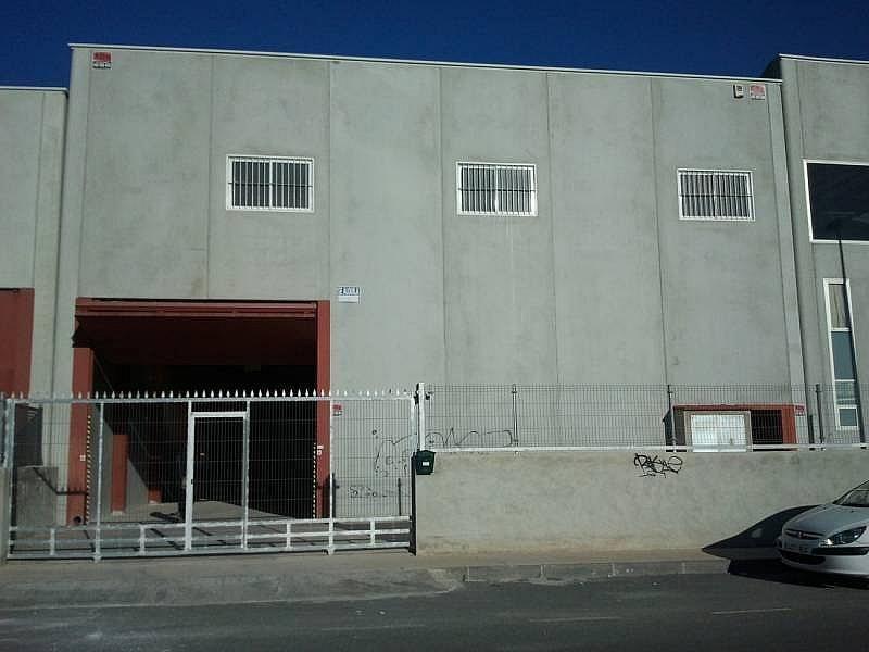 Foto - Nave industrial en alquiler en calle Almazara, San Isidro (Alicante/Alacant) - 322648002