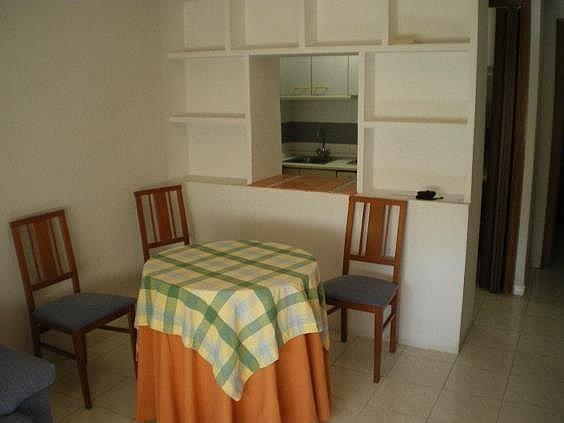 Apartamento en alquiler en Ciudad Real - 331363591