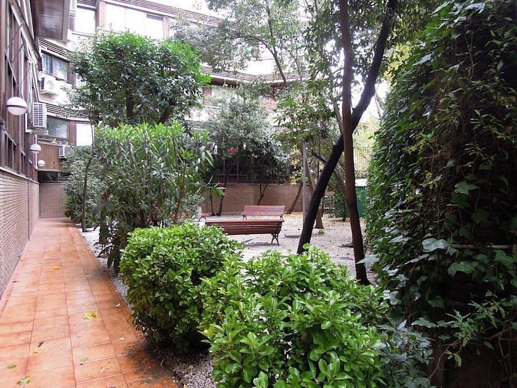 Dúplex en alquiler en calle Apolonio Morales, Nueva España en Madrid - 353030344