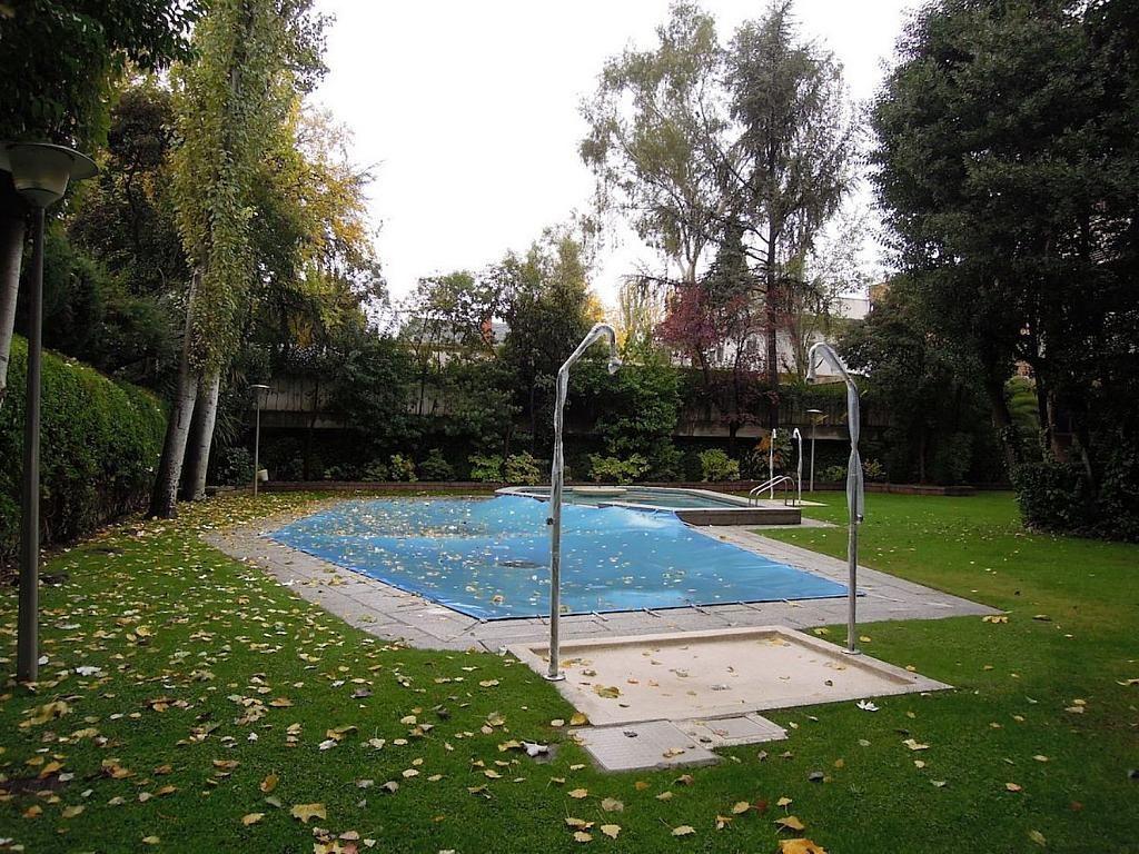 Dúplex en alquiler en calle Apolonio Morales, Nueva España en Madrid - 353030350