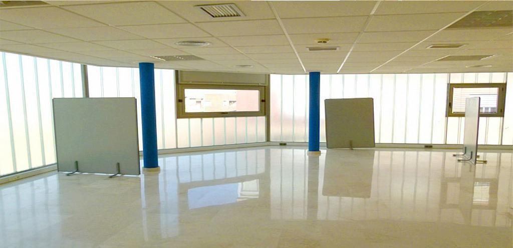 Oficina en alquiler en calle Vicente Blasco Ibáñez, Elche/Elx - 323920192