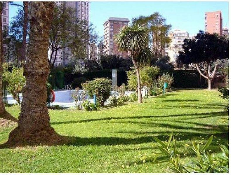 Foto - Apartamento en venta en calle Levante, Levante en Benidorm - 344526648