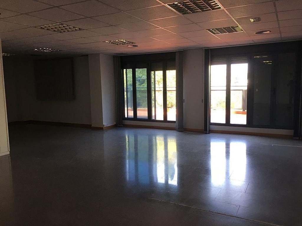 Oficina en alquiler en calle Tamarindos, Campanar en Valencia - 341787193