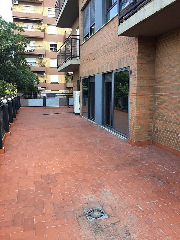 Oficina en alquiler en calle Tamarindos, Campanar en Valencia - 341787223