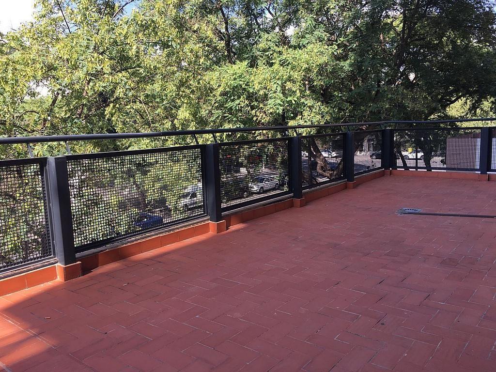 Oficina en alquiler en calle Tamarindos, Campanar en Valencia - 341787232