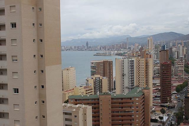 - Apartamento en venta en Benidorm - 278845096