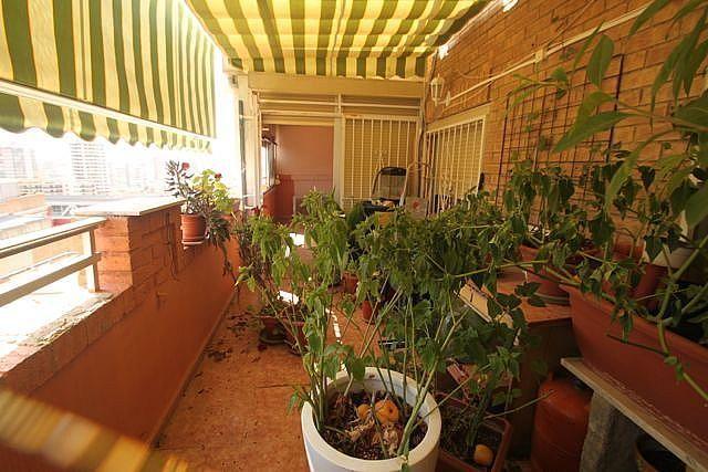 - Apartamento en venta en Benidorm - 227484436