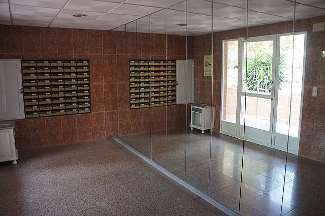 - Apartamento en venta en Benidorm - 227499343