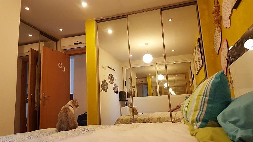 - Apartamento en venta en Benidorm - 239117009