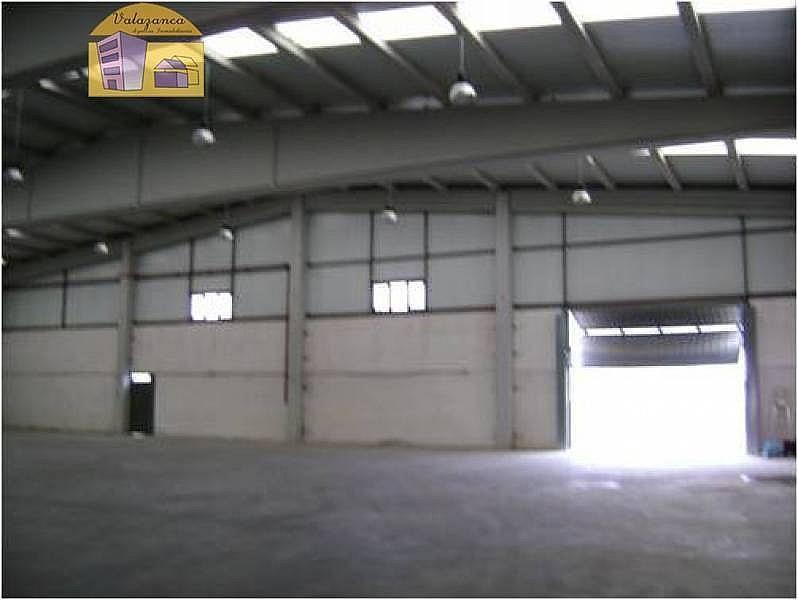 Foto - Nave industrial en alquiler en calle Itv, Parla - 283447871