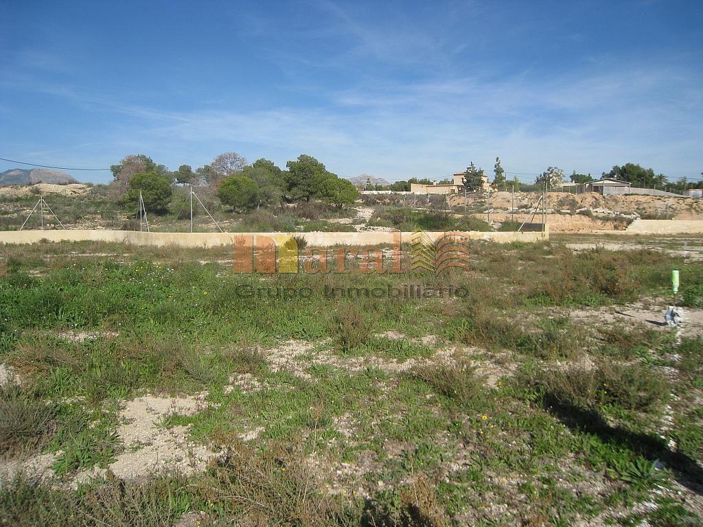 Vistas - Parcela en alquiler en San Vicente del Raspeig/Sant Vicent del Raspeig - 249324742