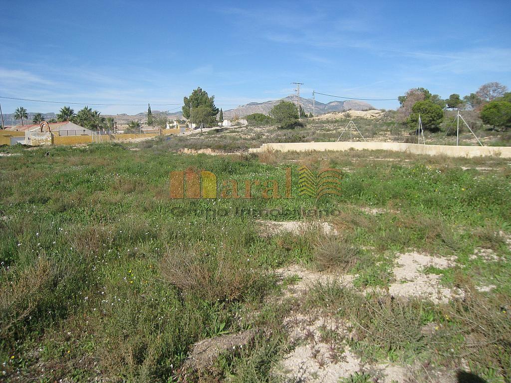 Vistas - Parcela en alquiler en San Vicente del Raspeig/Sant Vicent del Raspeig - 249324745