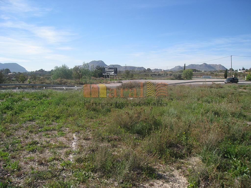 Vistas - Parcela en alquiler en San Vicente del Raspeig/Sant Vicent del Raspeig - 249324748