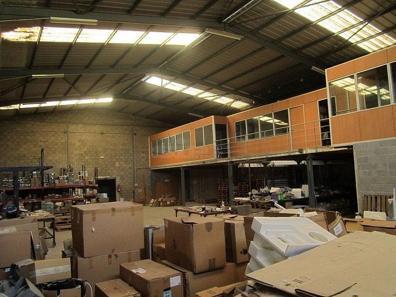 IMG_1717.JPG - Nave industrial en alquiler opción compra en calle Olerdola Poligono Industrial Sant Pere Molanta, Olèrdola - 214949472