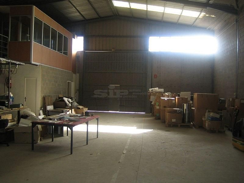 IMG_4666.JPG - Nave industrial en alquiler opción compra en calle Olerdola Poligono Industrial Sant Pere Molanta, Olèrdola - 214949499
