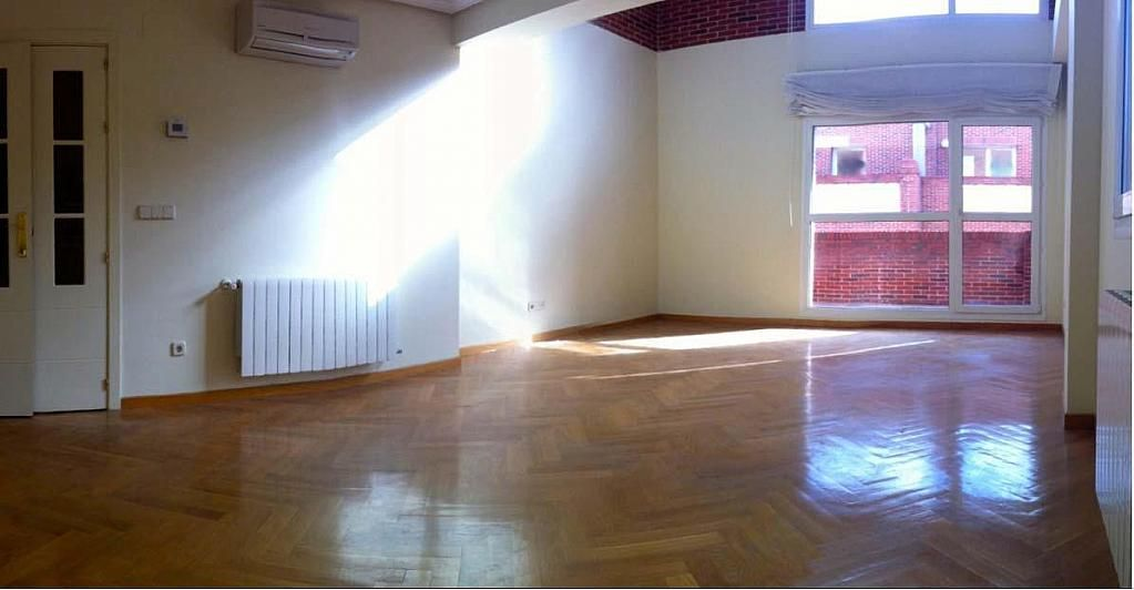 Salón - Dúplex en alquiler en calle Pirineos, Ciudad Universitaria en Madrid - 217437922
