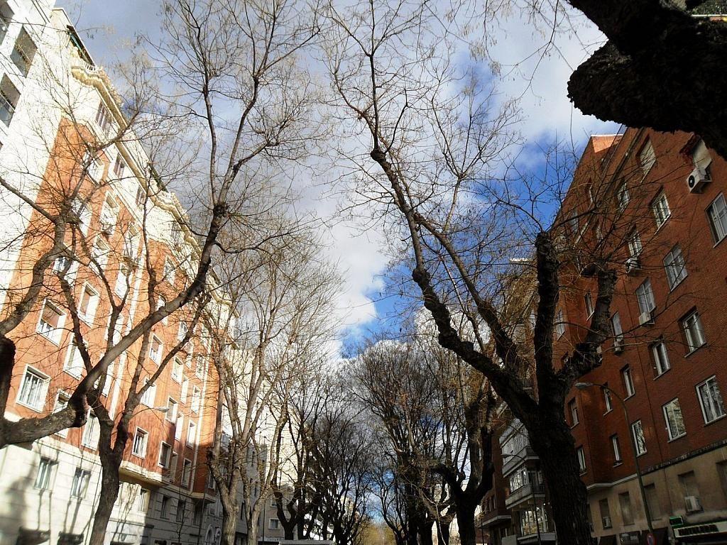 Oficina en alquiler en Lista en Madrid - 358257827