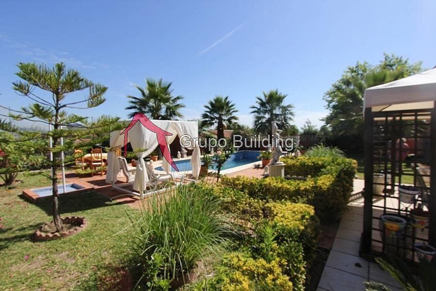 Foto - Villa en alquiler en calle Pinos de Alhaurín, Alhaurín de la Torre - 298302212