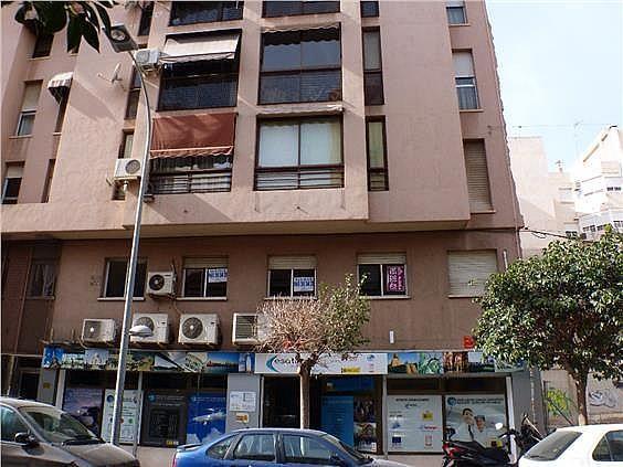 Oficina en alquiler en calle García Andreu, Benalúa en Alicante/Alacant - 242693158