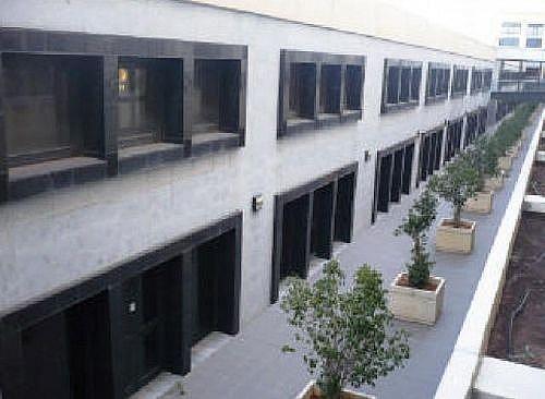 Local en alquiler en calle Americo Vespucio, Triana en Sevilla - 297532863