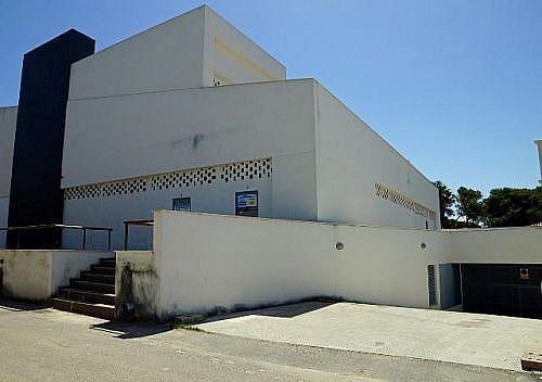 - Local en alquiler en calle De la Barrosa, Chiclana de la Frontera - 185032199