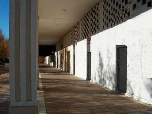 - Local en alquiler en calle Casuarina, Este - Alcosa - Torreblanca en Sevilla - 188289356
