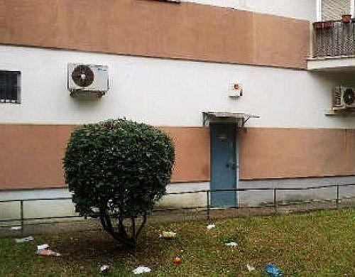 - Local en alquiler en calle Ntra Sra de la Oliva, Bami en Sevilla - 210649672