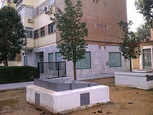 - Local en alquiler en calle Paz, La Oliva en Sevilla - 219558738
