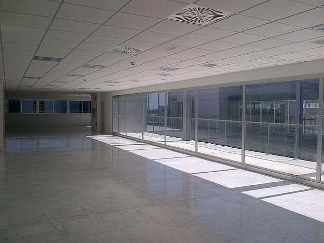 Detalles - Oficina en alquiler en calle Isla de la Cartuja, Triana en Sevilla - 124130699