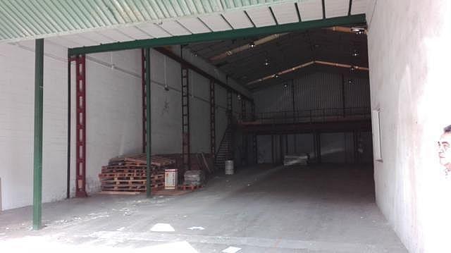 Nave industrial en alquiler en calle Autovia, Av. Ciencias-Emilio Lemos en Sevilla - 223673601