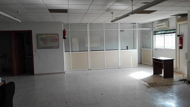 Nave industrial en alquiler en calle Autovia, Av. Ciencias-Emilio Lemos en Sevilla - 223673604