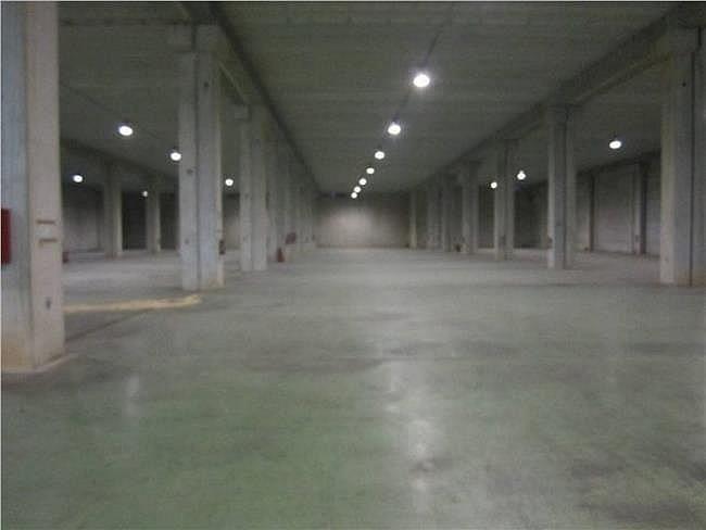 Nave industrial en alquiler en Sabadell - 317398052