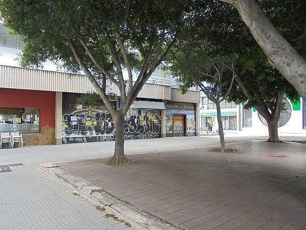 Foto número 2          - Local comercial en alquiler en El Cónsul-Ciudad Universitaria en Málaga - 257636965