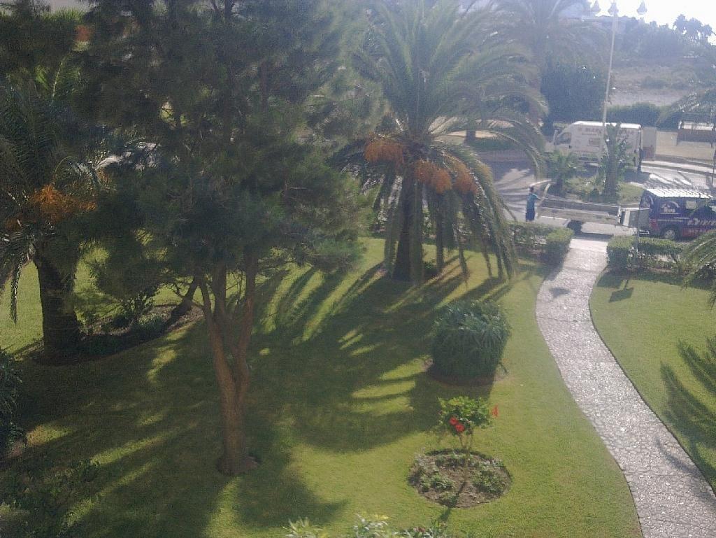 Apartamento en alquiler en calle Centro Internacional, Algarrobo Costa - 251629046