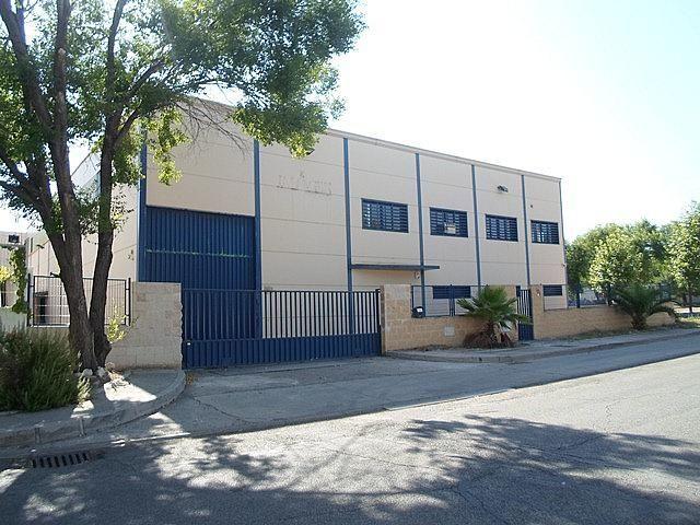 Nave industrial en alquiler en Pinto - 307445773