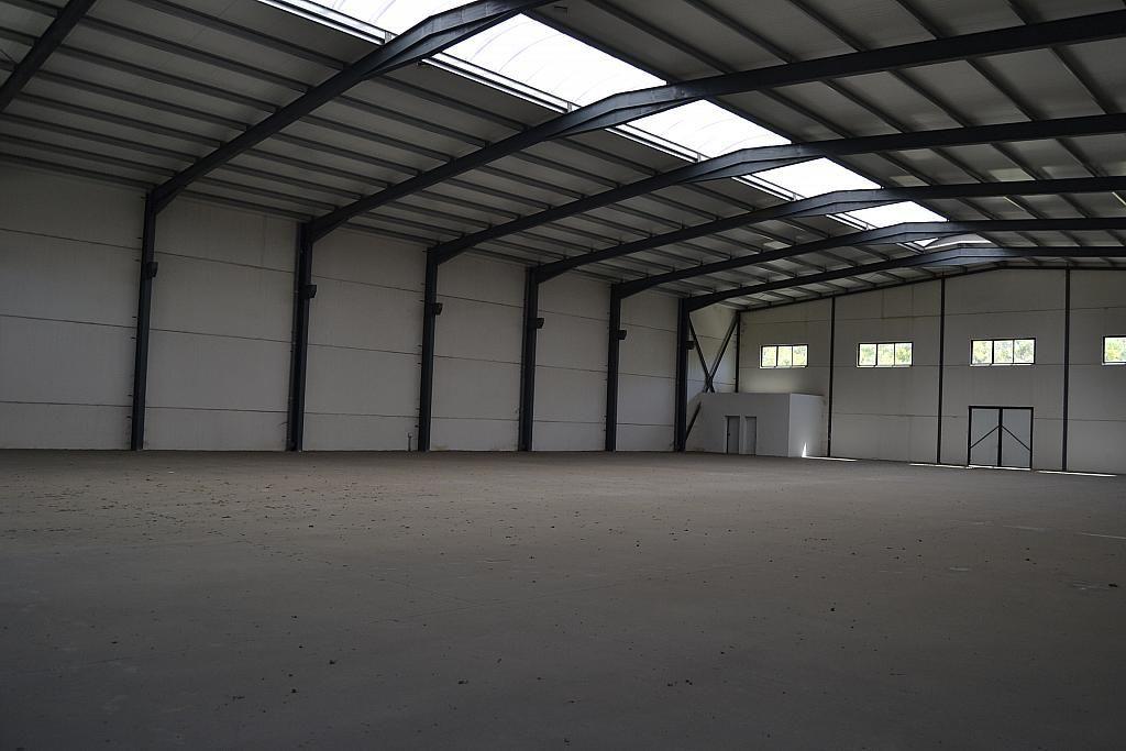Nave industrial en alquiler en Casarrubios del Monte - 137949122