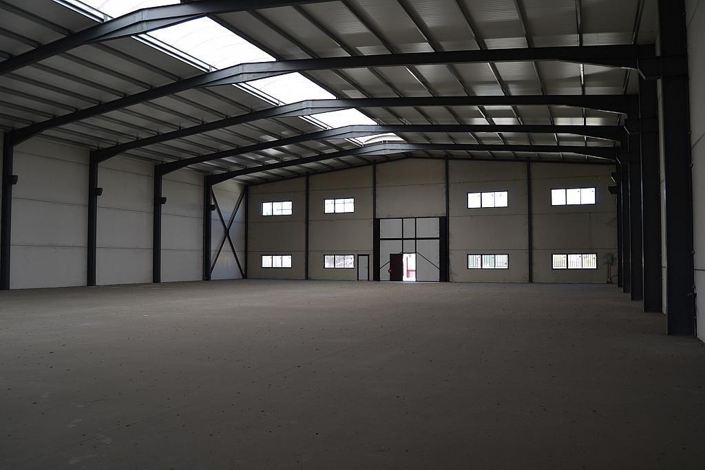 Nave industrial en alquiler en Casarrubios del Monte - 137949193