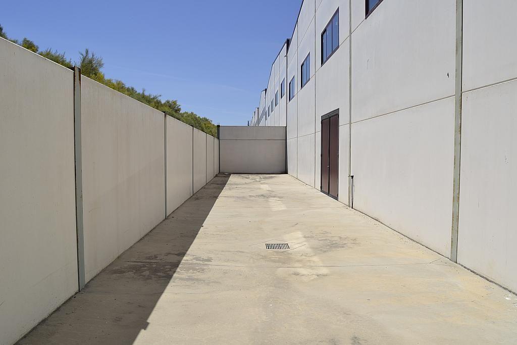 Nave industrial en alquiler en Casarrubios del Monte - 137949196