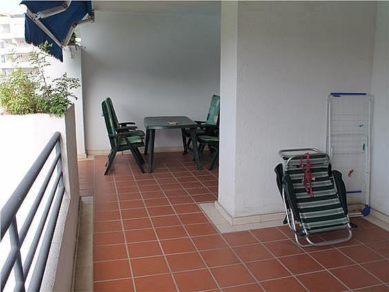 Piso en alquiler en Nueva Andalucía-Centro en Marbella - 337519157