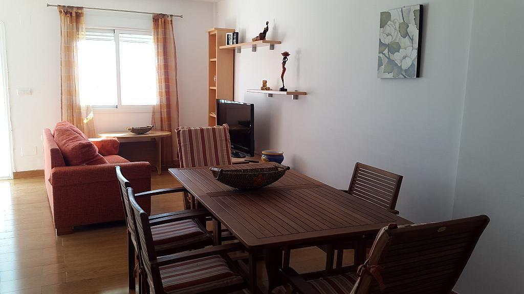 Salón - Apartamento en alquiler de temporada en Morche, El - 263180748