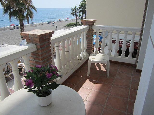 Terraza - Apartamento en alquiler de temporada en Morche, El - 203365433
