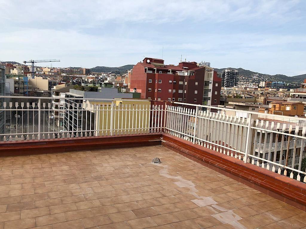 Alquiler de pisos de particulares en la ciudad de badalona - Pisos de alquiler en getxo particulares ...