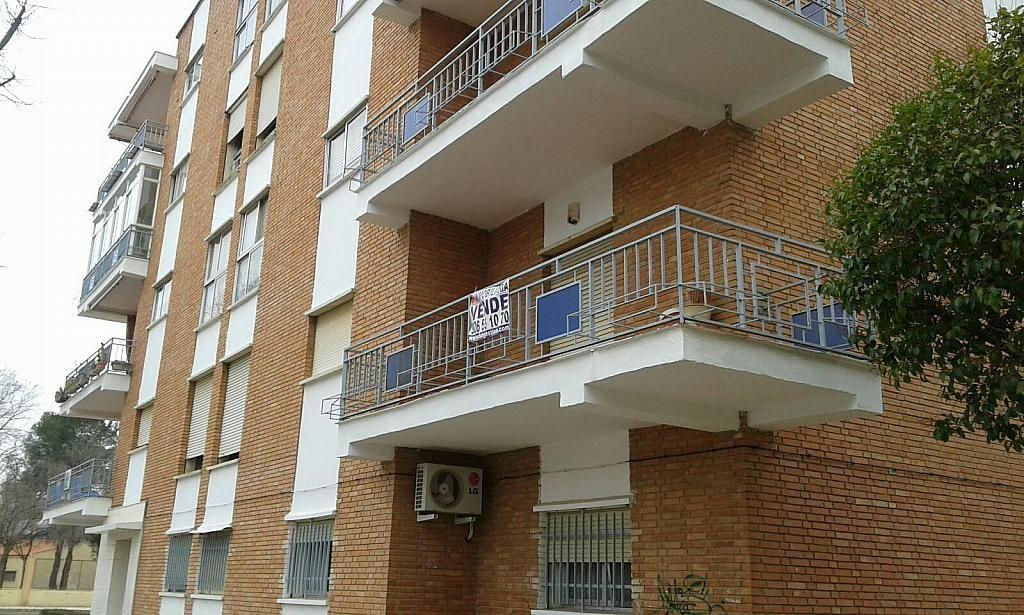 Venta de pisos de particulares en la ciudad de alc zar de for Pisos en alcazar de san juan