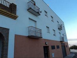 Piso en venta en calle Camino de la Pia, Alcaucín - 216242947